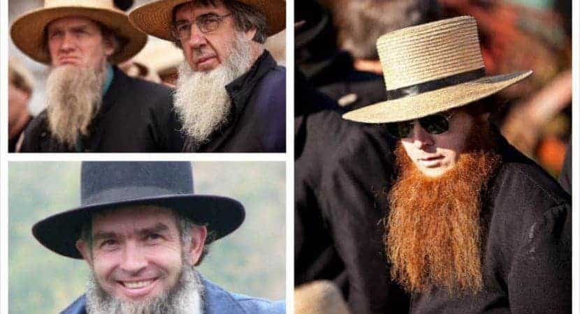 amish beard collage