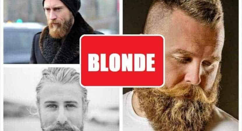 blonde beard FEATURED