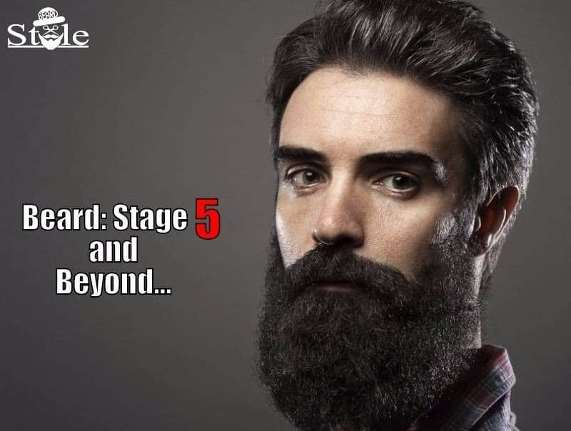 beard-growth-final-stage-5th1 5 Stages of Beard Growth Cycle