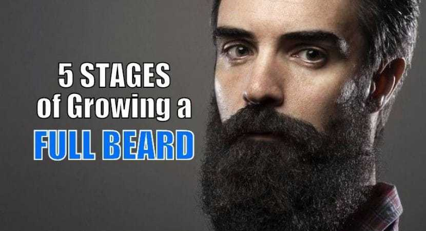 Facial Hair Stages Xxx Video