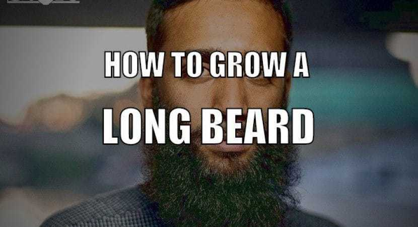 grow-your-beard-long2