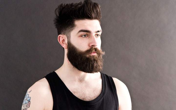Image result for the hipster beard