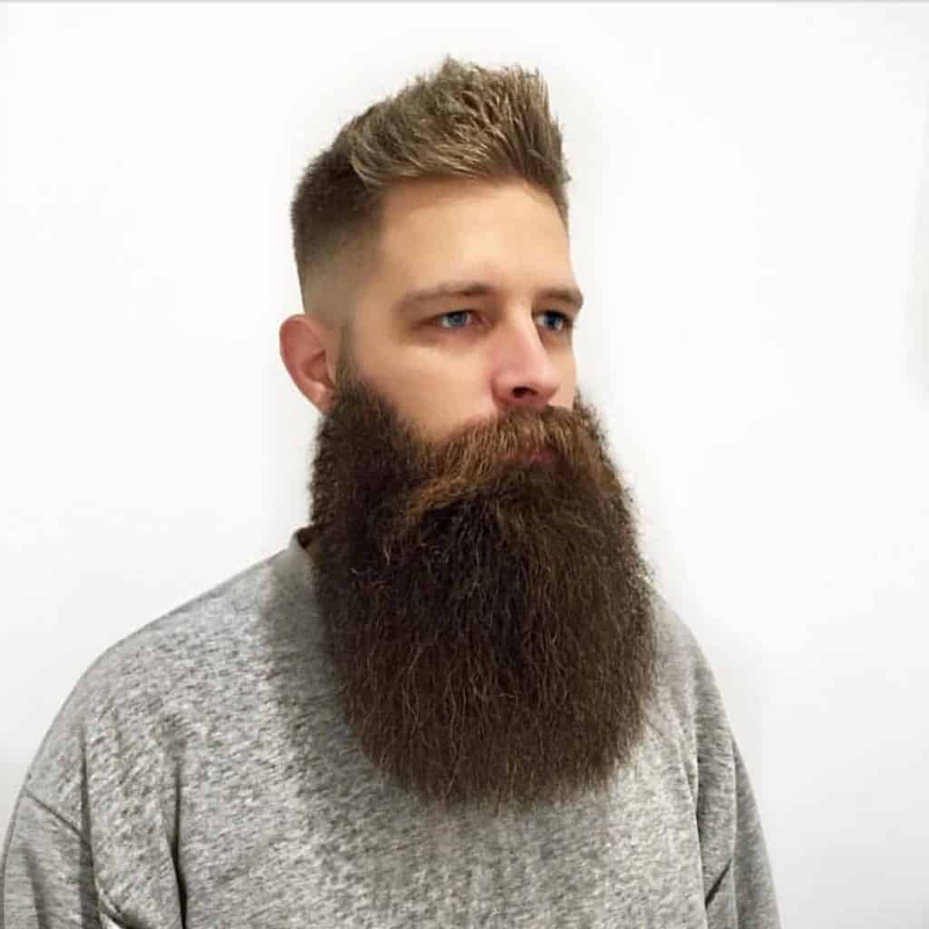 2073bedb0bc0df193e7347d9fb04b2fb-1024x1024 115 Sexy Long Beard Styles for Men