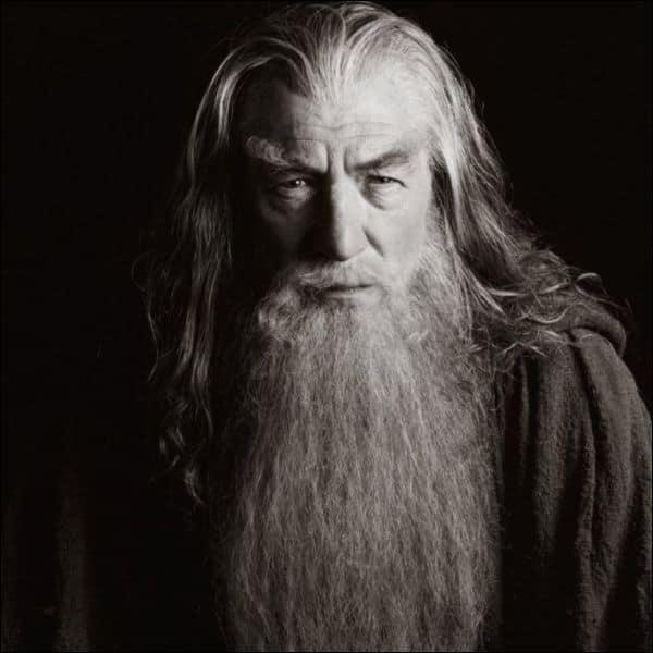 long-beard-style-28 115 Sexy Long Beard Styles for Men