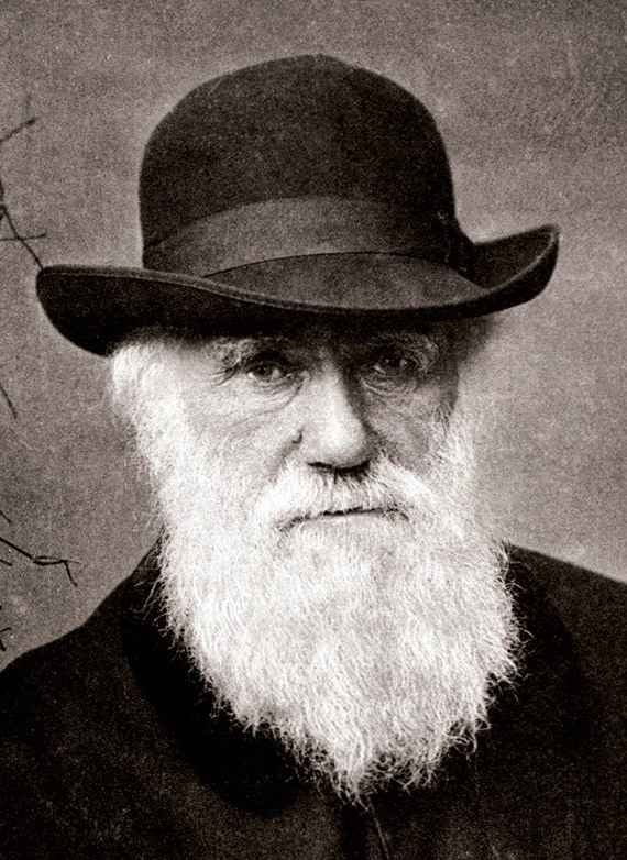 Brilliant 15 Most Famous Bearded Men In The History Natural Hairstyles Runnerswayorg