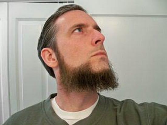 subtle lined dutch beard style