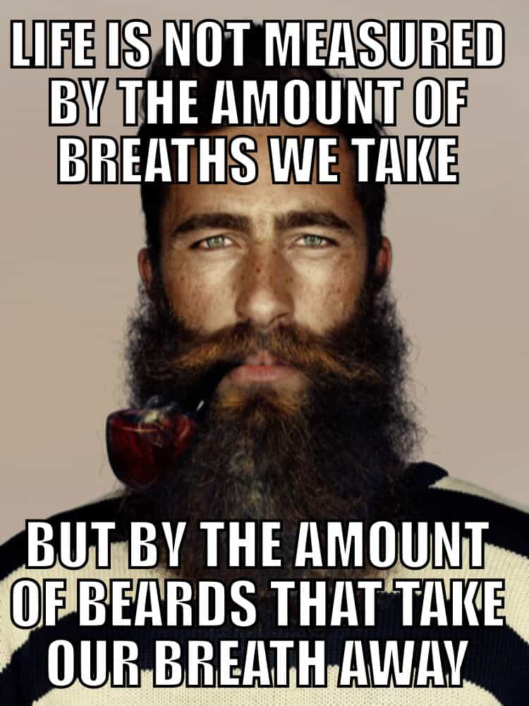 2e1ad24543e7da87daaf3a97c4bb8f11 50 Funny Beard Memes That'll Definitely Make You Laugh