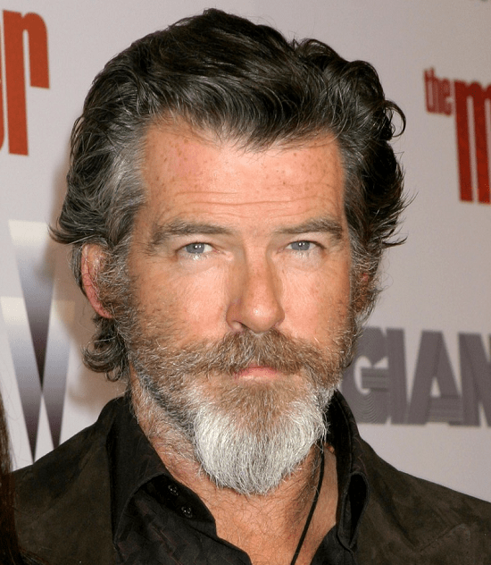 Pierce-Brosnan Top 60 Celebrities With A Beard