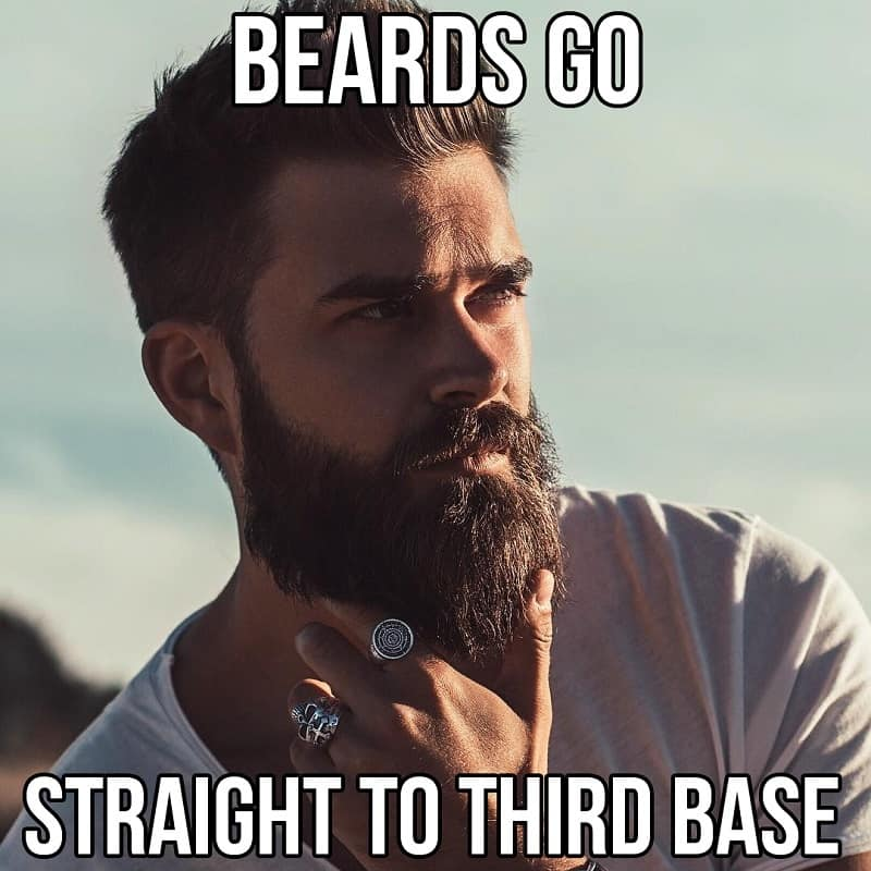 50 Funny Beard Memes That Ll Definitely Make You Laugh