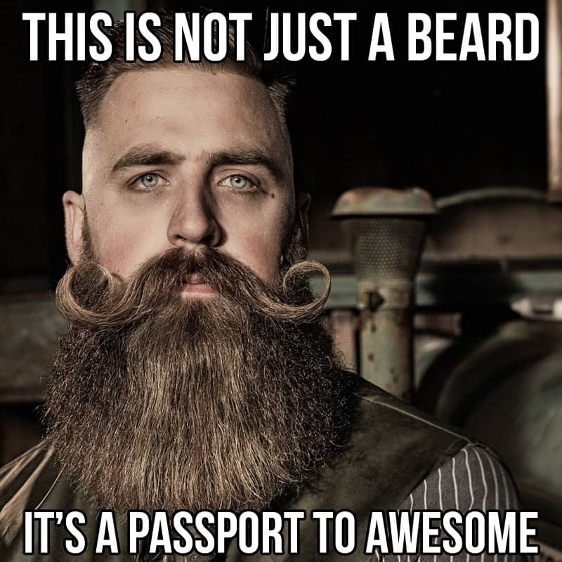 beard-meme-3 50 Funny Beard Memes That'll Definitely Make You Laugh