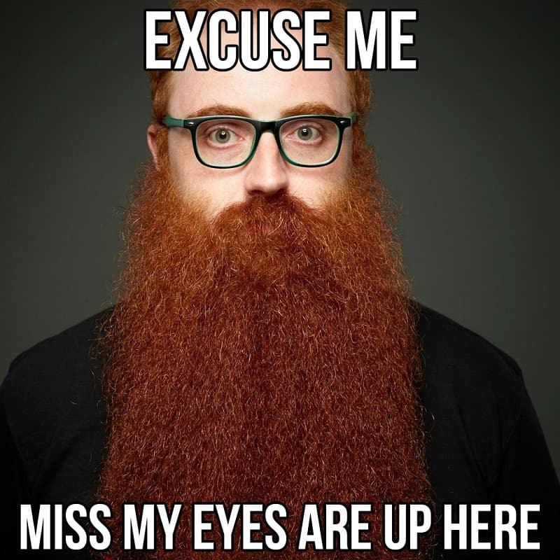 beard-meme-6 50 Funny Beard Memes That'll Definitely Make You Laugh