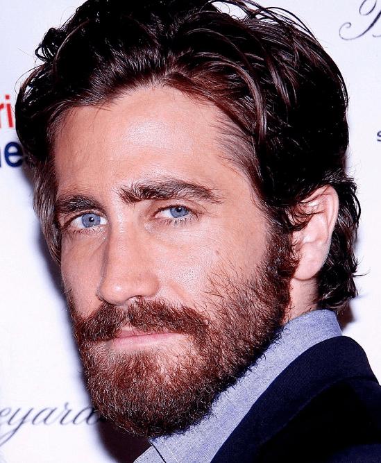 jake-gillen Top 60 Celebrities With A Beard