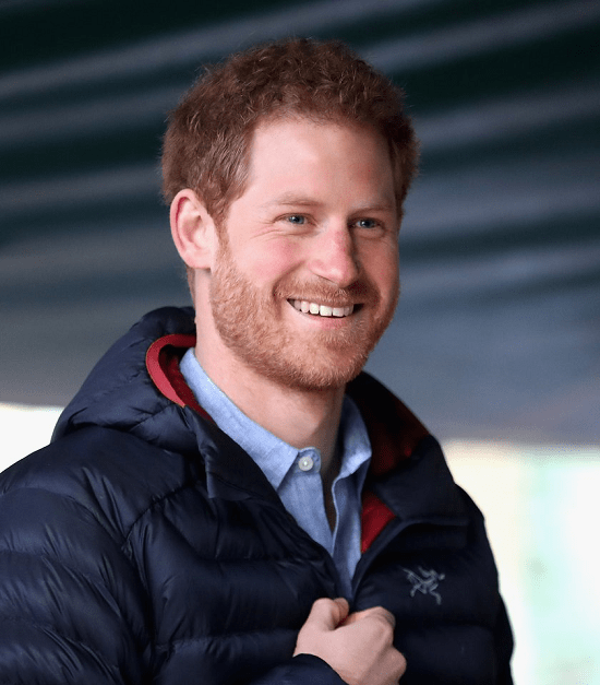 prince-harry Top 60 Celebrities With A Beard