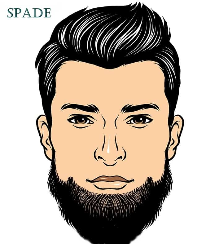7 What A Spade Beard Really Looks Like + 3 Trendy Styles
