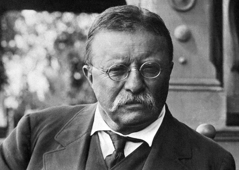 Teddy Roosevelt Walrus Mustache