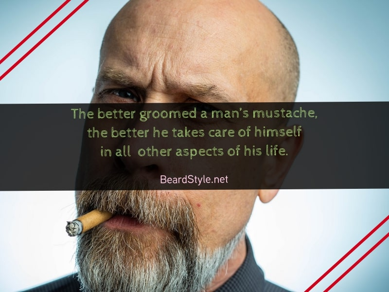 funny-quotes-about-mustache-6 20 Funny Mustache Jokes & Quotes to Give You A Good Laugh